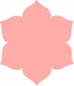 flower icon | Individual sessions